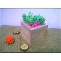 Centro De Mesa, Souvenirs, Cactus, Casamiento, Cumpleaños,