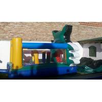 Castillos Inflables Con Forma De Gato Silvestre 3x4 Stock