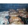 Parrillero-camarero - Picadas- Servicio Catering