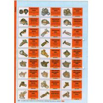 Porta Inyector Orbis - Longvie - Domec G/n Art.13747/4