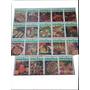 N°8 Lote Enciclopedia Salvat Cocina 19 Cuadernos + Carpeta