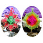 Mandala Tejido, Atrapasueños, Souvenirs 10cm, Colgante Movil