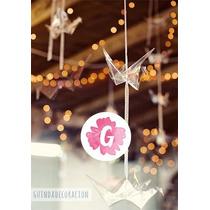 Grullas Transparentes Souvenir Origami Decoracion Casamiento