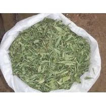 Stevia Hojas Secas (paraguay) X 1 Kg El Mejor Importada