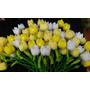 Flores En Tela De Comunion Tulipanes