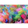 Polvos De Colores Holi - Oferta X100 U. Nuevos Colores!