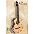 La Alpujarra 100 Guitarra De Concierto Daiam