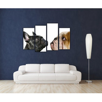 Bulldog Ingles Frances 4 Partes Bastidor Canvas 120x80 Cm