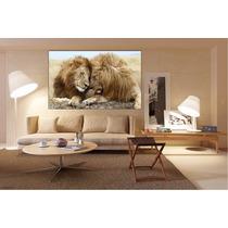 Felino Leon Bastidor Tela Canvas De 90x55 Cm Exelente