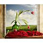 Flor En Ventana - Impreso En Tela Canvas 90x70 Cm Envio S/c