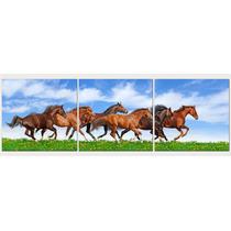 Caballos Cabalgando En 3 Partes De 50 X50 Cm Exelente Calida