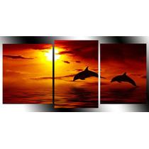 Amanecer Y Delfin Tela Canvas .exelente Calidad, Hermoso!!
