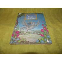 El Pájaro De Plata - Joyce Petschek