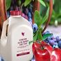 Berry Nectar Aloe Vera Forever, 4 Bidones !!!