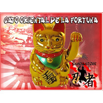 Gato De La Fortuna Maneki Neko, Atrae Buena Fortuna!!!