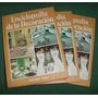 Libros Enciclopedia De La Decoracion Nauta Tres Tomos 1978