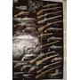 Poster Evolucion Armas Fuego Italia Guerra Ejercito Rifles