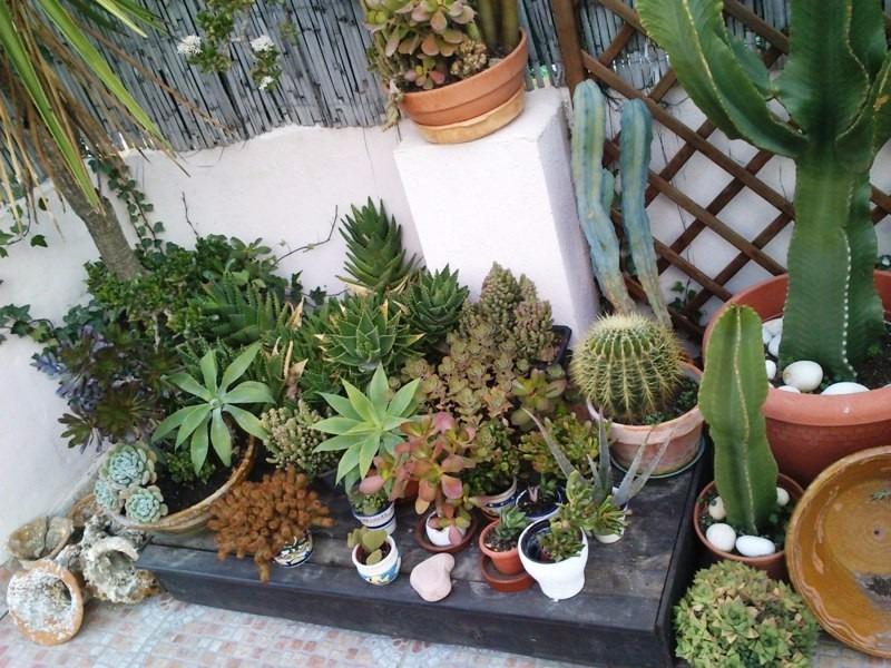 Dise o y mantenimiento de jardines terrazas y balcones - Diseno de terrazas y jardines ...