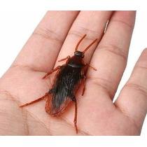 Cucaracha De Goma X 2 Broma Chasco Terror Halloween