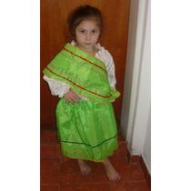 Disfraz Patrio Coya Nena Talle 10 Completo Coya Acto Escolar