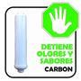 Cartucho Carbon Post Inline