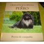 Gran Enciclopedia Del Perro - Perros De Compañia (vol 16)