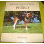 Gran Enciclopedia Del Perro - Sabuesos (vol 28)