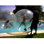 Alquiler Water Balls Eventos (0230)154561174 Radio 560*521