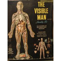 Estudiante De Medicina Medico Doctor Hombre Transparente