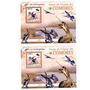 2009 Fauna - Aves - Aves Serpientes - Comoras