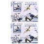 2009 Fauna - Aves - Golondrinas - Comoras