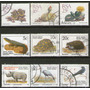 Sudáfrica 9 Sellos Usados Flora Y Fauna Años 1988-93