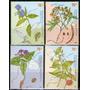 Argentina X4 Sellos Mint Botánica: Plantas Medicinales 2000