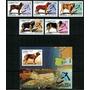 2004 Fauna- Animales Domésticos- Perros - Cuba