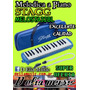 Melodica A Piano 32 Notas Stagg