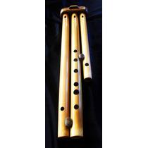 Flauta Armonica, Flauta Pareda