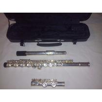 Flauta Traversa Brienz Con Estuche. Impecable.