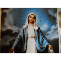 Elartezano Virgen De La Medalla Milagrosa - Protectora