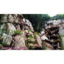 Cascadas, Fuentes Y Muros De Agua. Especialista