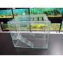 Hamstera De Vidrio Mini 30x25x22