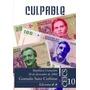 Culpable. República Cromañón, 30 De Diciembre De 2004