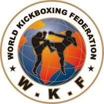 Remeras De Kick Boxing Instinct Thai Mma Ufc Artes Marciales
