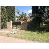 Alquiler Quinta En Moreno