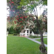 Barrio El Trebol Eze Excelente Casa Quinta Para Descanso