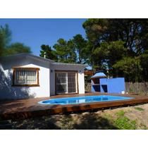 Alquiler Temporario- Mar Azul - 38 Y Punta Indio