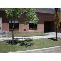 Alquilo Casa 4-5 Pers Mardelplata Opcional Garage-patio