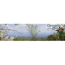 Crataegus Hills, Sta. Rosa De Calamuchita, Lotes Financiados