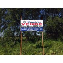 Campo 9 Has General Rodriguez S/ruta 6 A Metros De Ruta 24