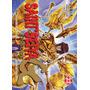Saint Seiya Episode G 23 Manga Editorial Ivrea Argentina