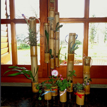 Original: Jardin Vertical Y Souvenir Ecologico Caña Bambú.
